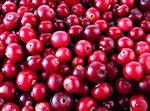 cranberries in green powder superdrink